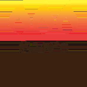 煙點高(約240°C),油煙少